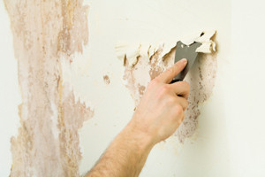 dry stripping paint